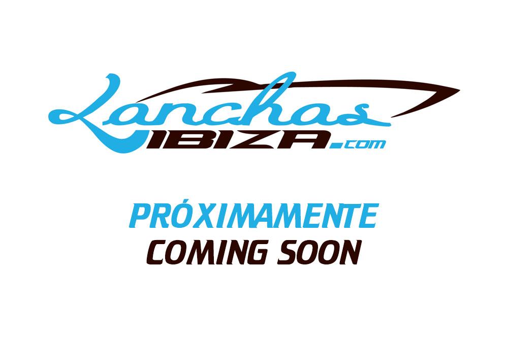 Lanchasibiza.com Formula 33ss