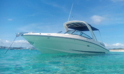 Alquile Sea Ray 250