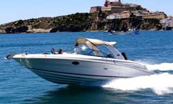 Rent Sea Ray 290 BR