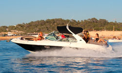 Alquile Sea Ray 295ss