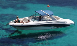Alquile Sea Ray 290
